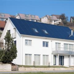 Schweizer Sollrif – Compleet dak als dakbedekking – Weijers-Eijkhout